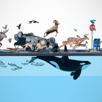 The Post-Apocalyptic World According to Josh Keyes