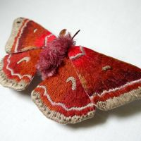 Delicate Textile Creatures of the Insect World