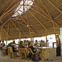Learning Among Nature: Green School in Bali