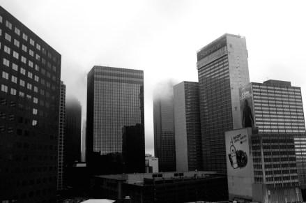 Misty Morning_6899677052_l