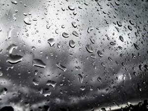 Day 51: Rain