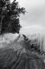 Tough Road