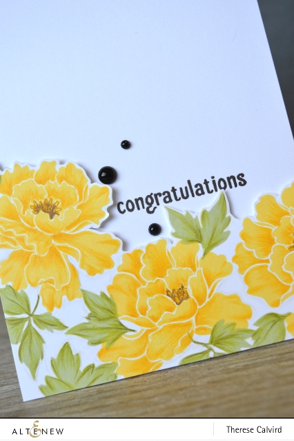 congratulations - Detail copy