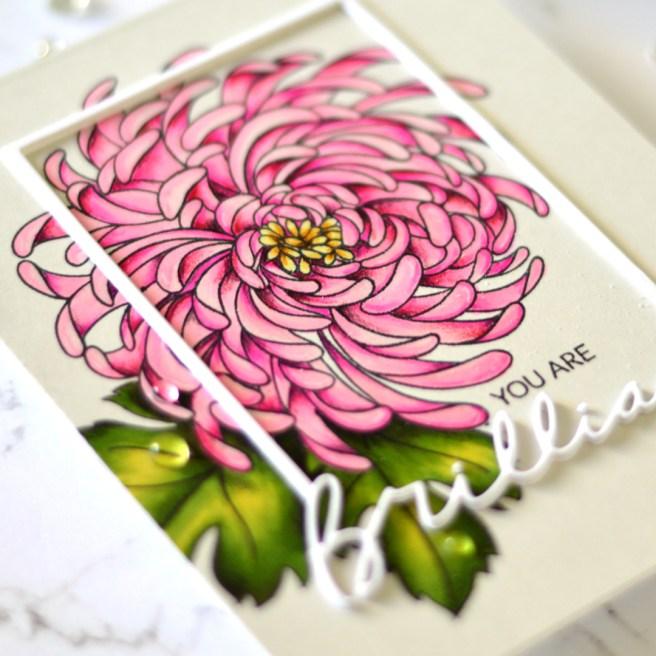 Flower Power - Mondo Chrysanthemum - Therese Calvird (card video) 3