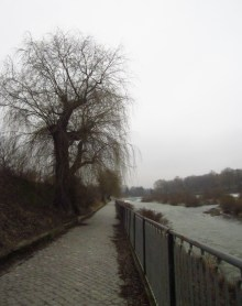 Peaceful walk next to the river...