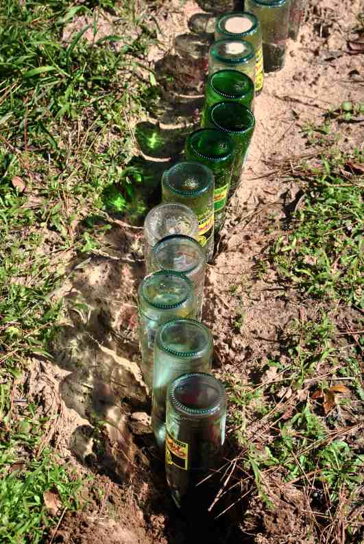 How to edge a garden with bottles