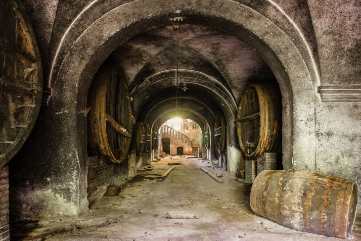 my big cellar of hope – picture