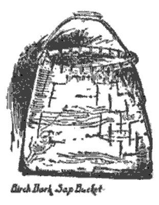 birch bucket