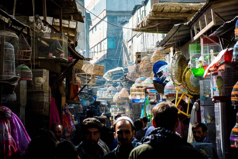 Ka Faroshi Bird Market in Kabul, Afghanistan - Lost With Purpose