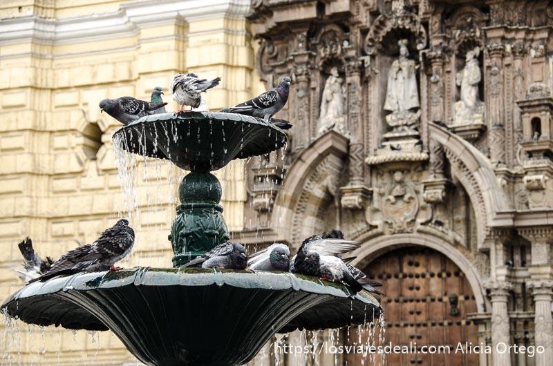 fuente de dos pisos con una docena de palomas posadas y detrás puerta de iglesia barroca