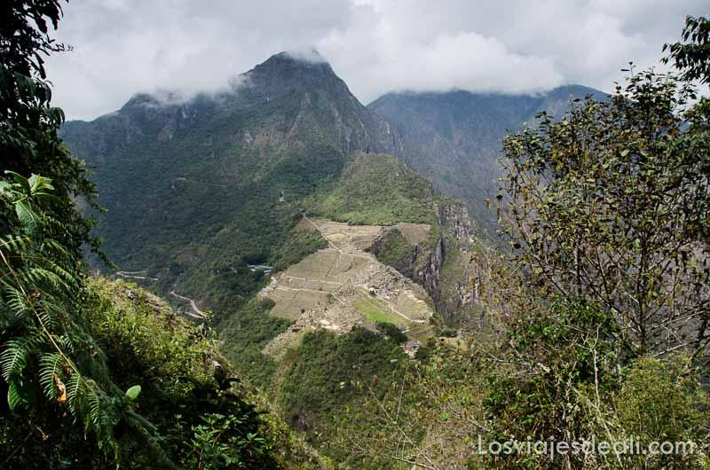 machu picchu visto desde la cumbre del huayna picchu parece un cortado gris en la montaña verde
