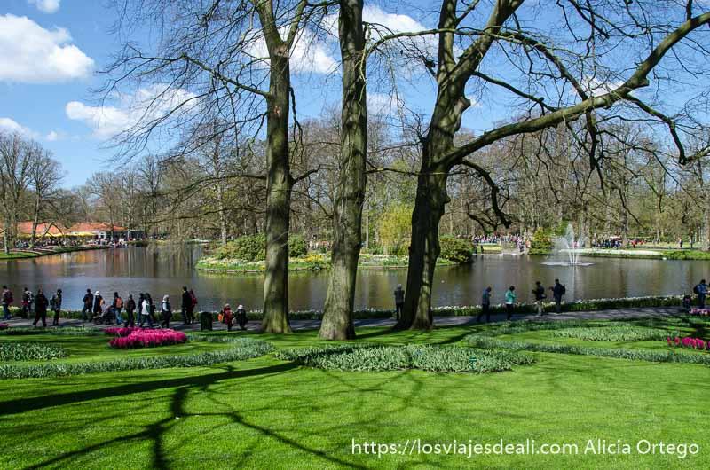 vista del parque con tres grandes árboles sin hojas y detrás estanque