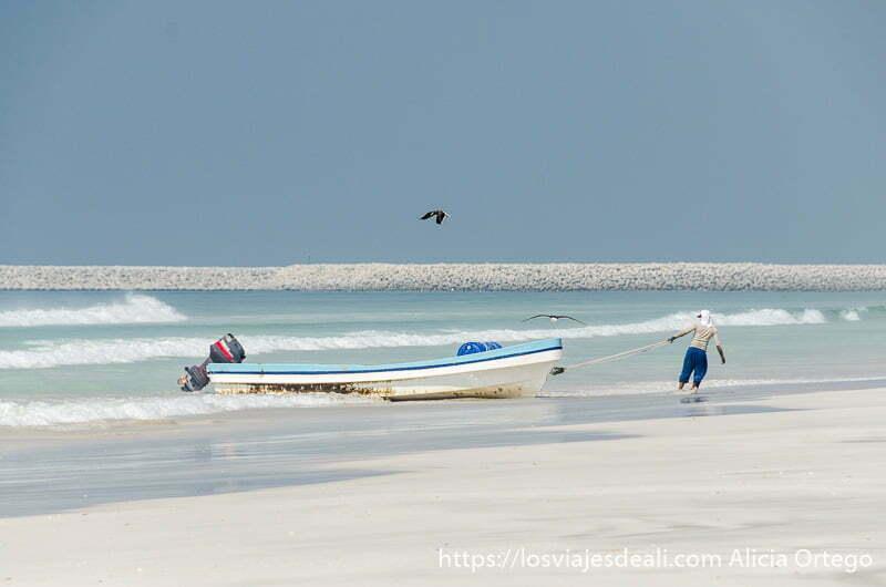 pescador tirando de su barca con motor fuera del agua y gaviota sobrevolando encima visitas que hacer cerca de salalah