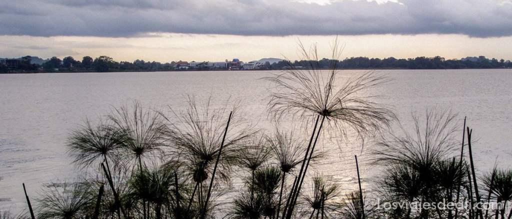 lago tana