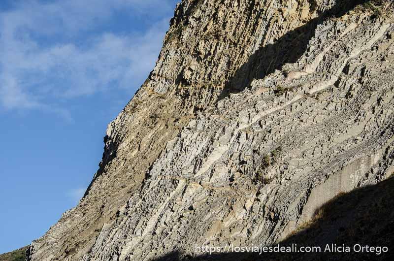 capas geológicas en el flysch de zumaia con forma de dientes