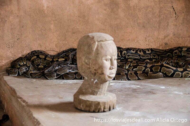 cabeza de madera y detrás varias serpientes pitón amontonadas contra la pared en ouidah benin