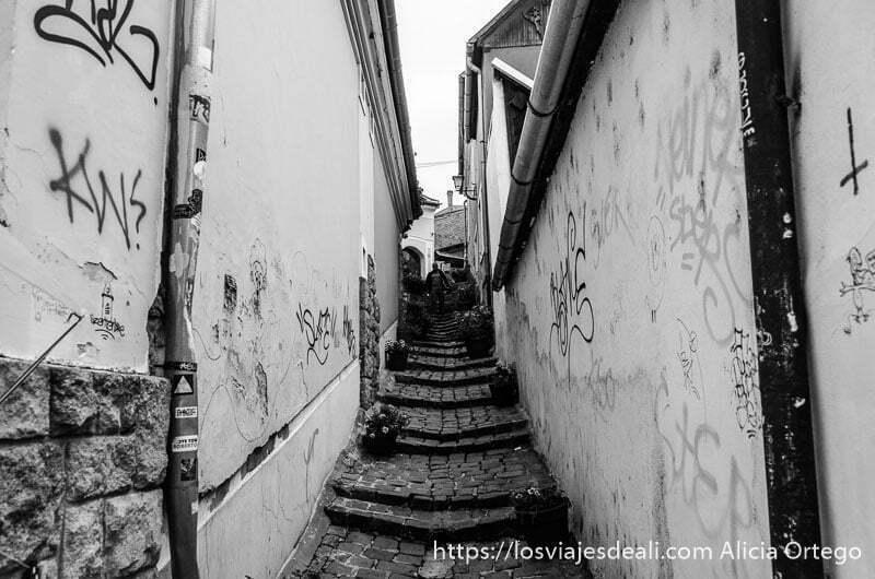 callejón estrecho con escaleras y canalones para el agua en szentendre