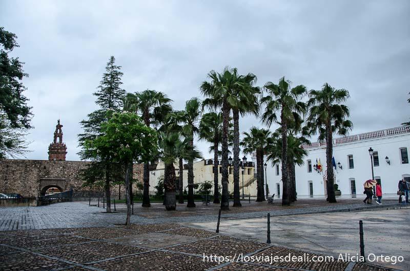 zona de las murallas de jerez de los caballeros con grupo de palmeras
