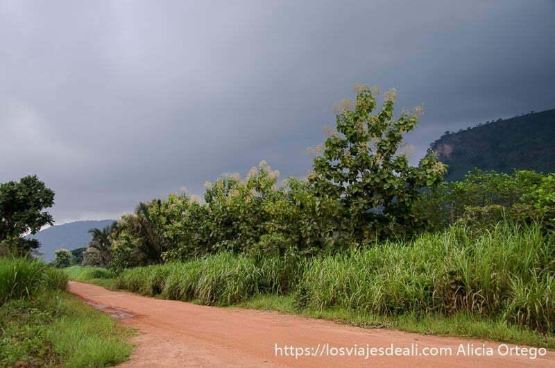 pista de tierra roja con vegetación muy verde a los lados y grandes nubarrones de tormenta ruta por el interior de togo