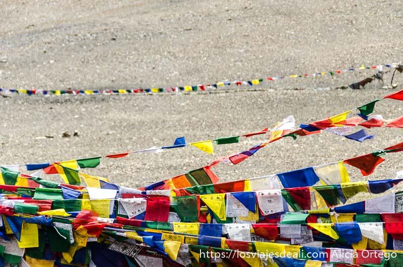hileras de banderas de oración con los cinco colores carreteras del himalaya indio