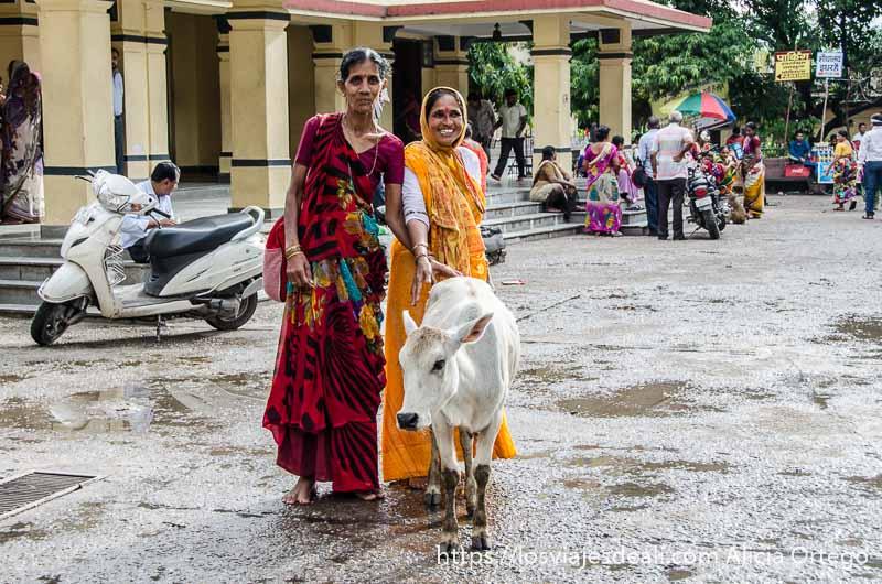 dos mujeres con sari posando sonrientes con un ternero en rishiskesh