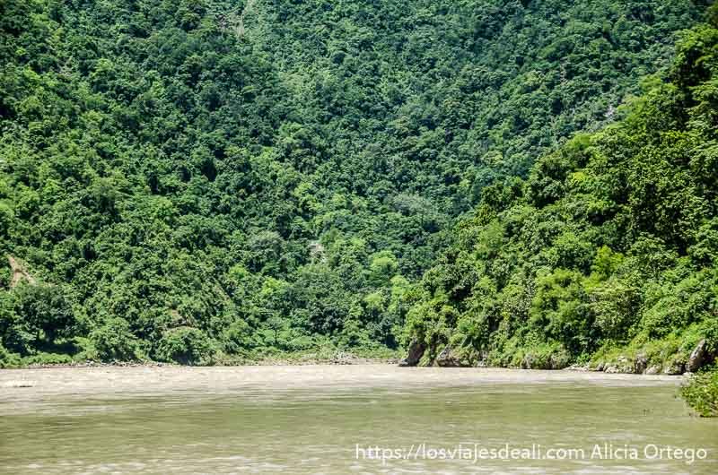 pequeña playa de arena blanca en el ganges y ladera de montaña cubierta de selva en rishikesh