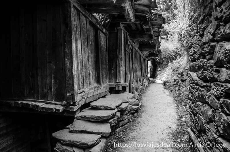 callecita del pueblo con bancos de piedra junto a las casas que ver en manali