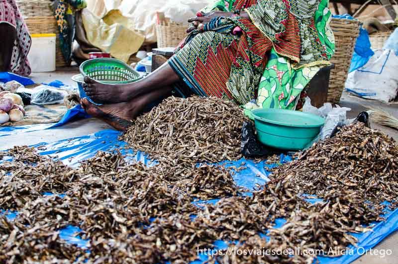 puesto de pescado seco distribuido en montoncitos en mercado de natitingou