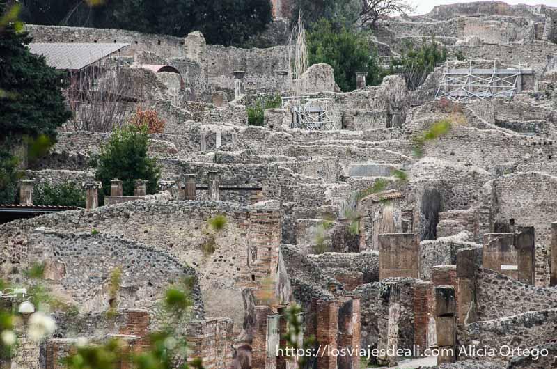 casas en ruinas visita a pompeya