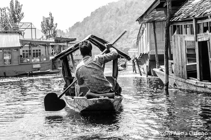 barquero remando de espaldas entre las casas del lago dal srinagar