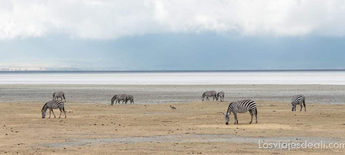 imagenes y sensaciones de Kenia y Tanzania