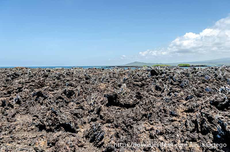 roca volcánica y al fondo el mar en isla isabela