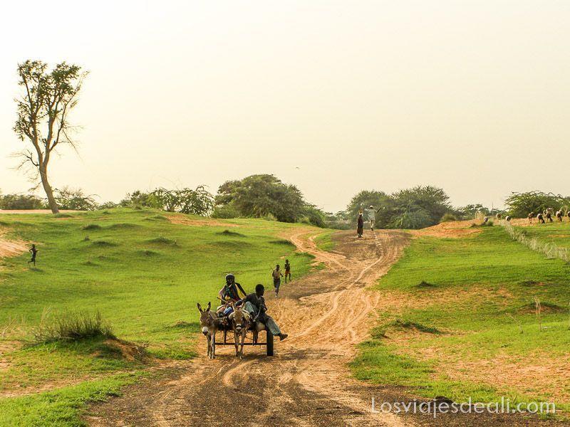 paisaje del Sahel con carrito tirado por dos burritos y chicos corriendo por qué viajar a África