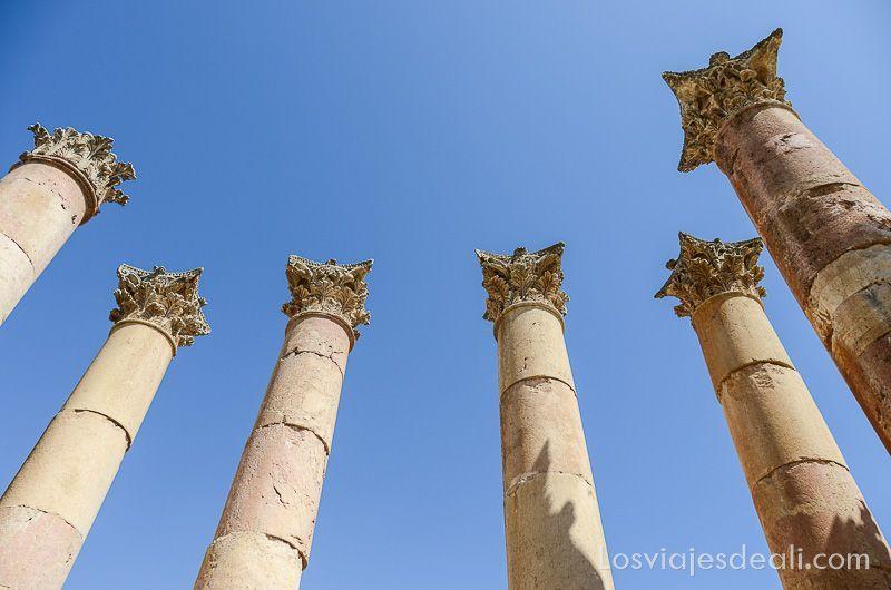 columnas con capiteles corintios vistas desde abajo recortándose en el cielo azul
