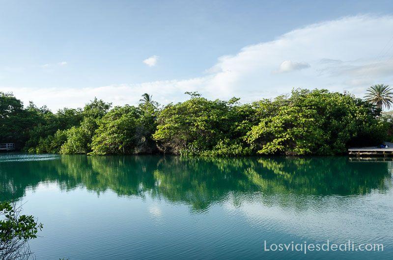isla santa cruz laguna ninfas paseo