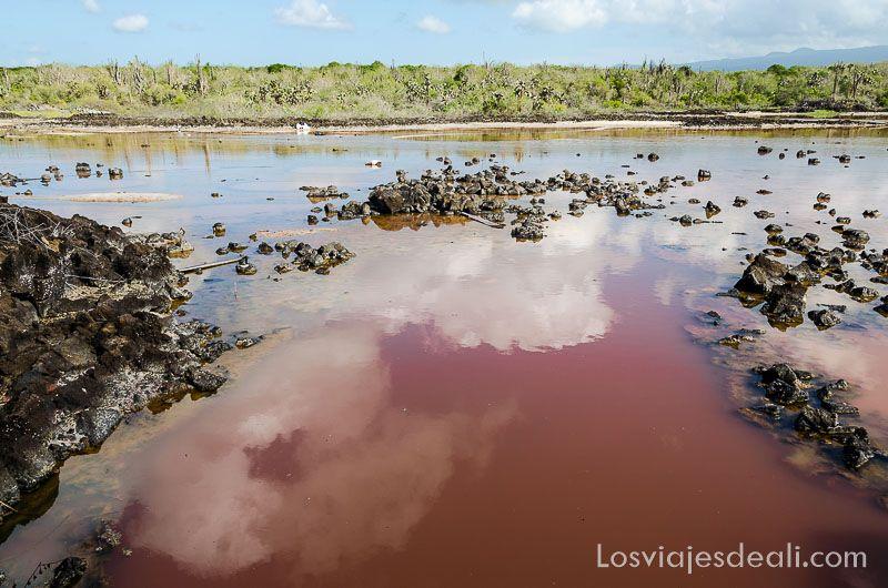 isla santa cruz mina sal