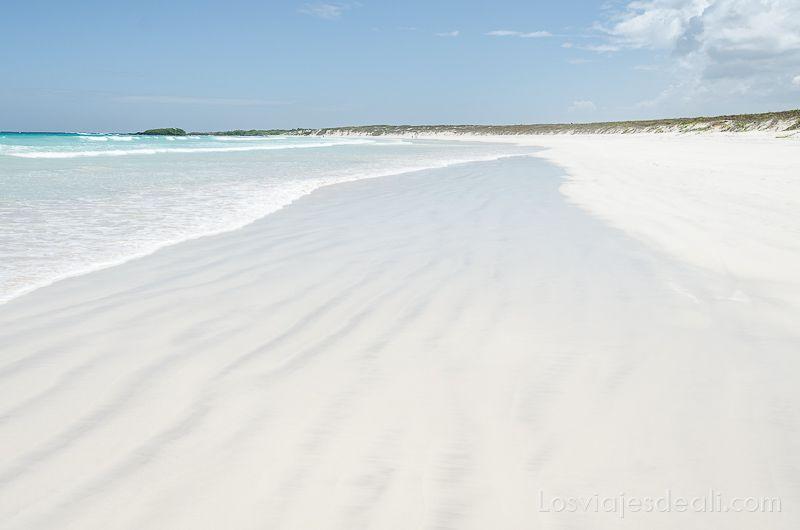 isla santa cruz playa brava tortuga bay
