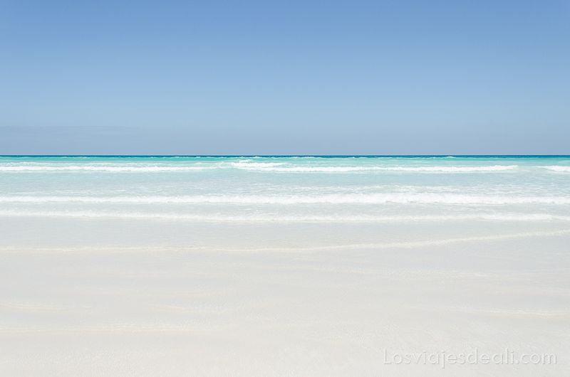 isla santa cruz playa tortuga bay