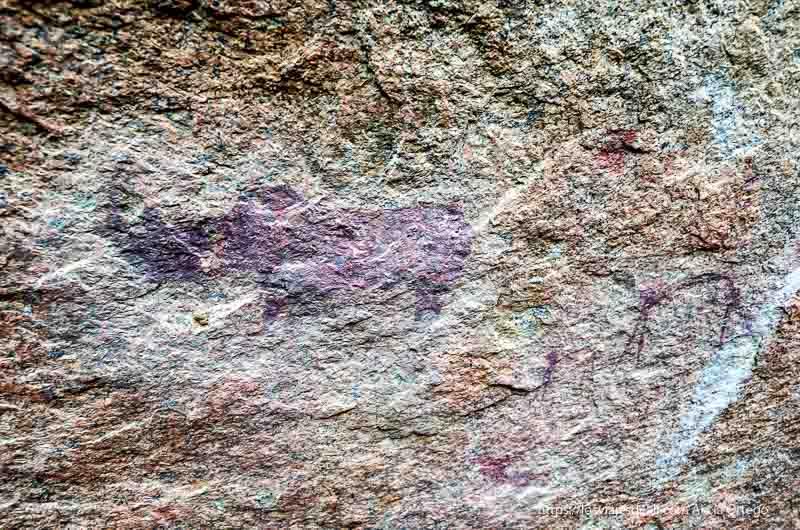 pintura ruprestre de rinoceronte en Spitzkoppe