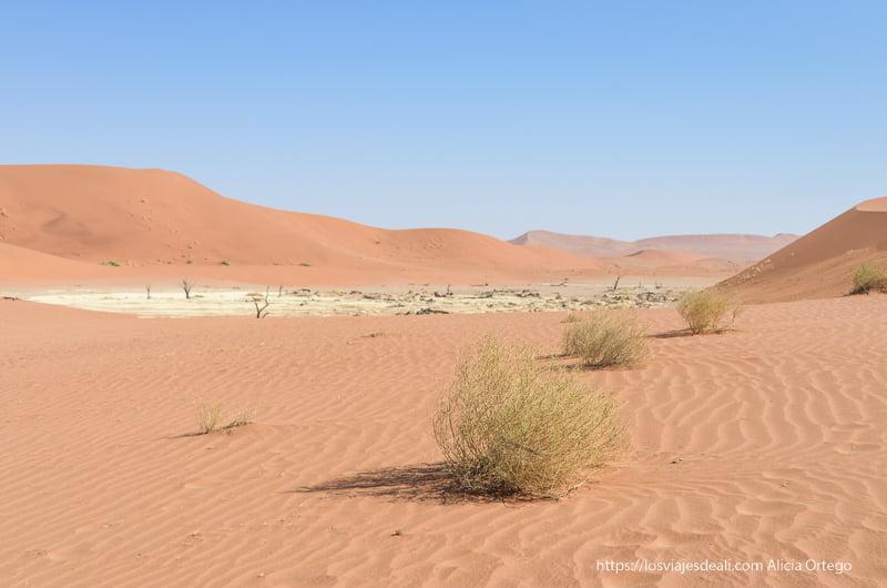lago seco en medio de dunas naranjas en Deadvlei Namibia