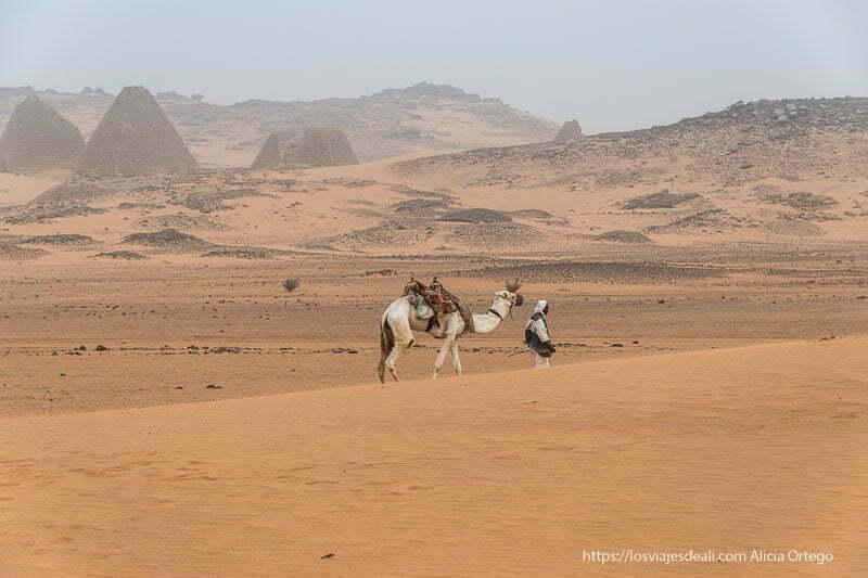 beduino y su camello en las pirámides de Meroe