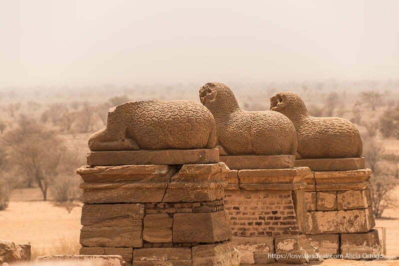avenida de carneros en la entrada del templo de Naqa en Sudán
