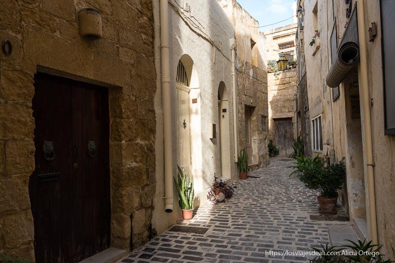 calle del centro de Victoria con adoquines y plantas cosas que ver en Gozo