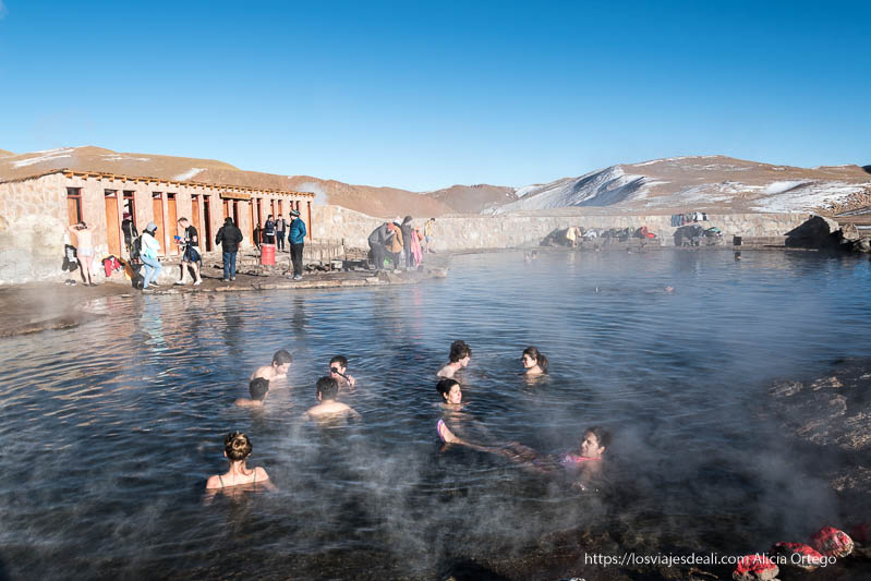 piscina de aguas termacles en geyseres de El Tatio Organizar tu viaje a Chile