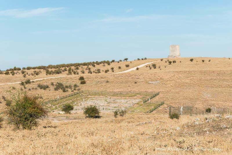 vista de las ruinas de uxama rodeadas de campos de cardos y con la atalaya islámica al fondo soria romana