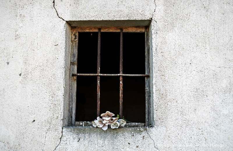 ventana con rejas oxidadas y flores de plástico campos de castilla