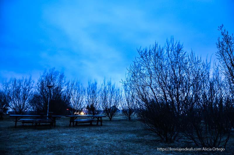 parque junto al hotel con cielo nublado donde se aprecia color verdoso de aurora boreal
