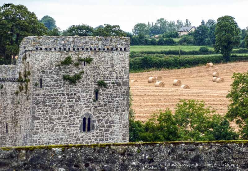 torre junto a campo de cereal castillos en irlanda
