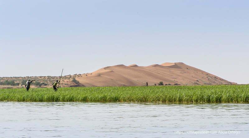 duna rosa de gao al fondo con franja de cañaverales y el río delante y dos pescadores impulsando sus barcas con pértigas