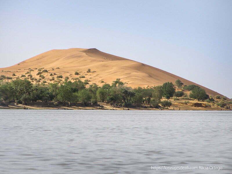 dune rose de gao con árboles en su base y el río